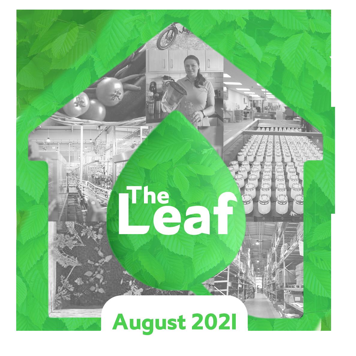 The Leaf - Drayton Sustainability Blog Logo - August 2021