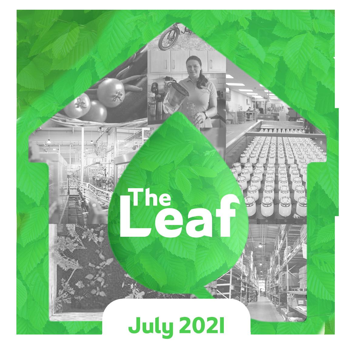 The Leaf Drayton Sustainability Blog logo